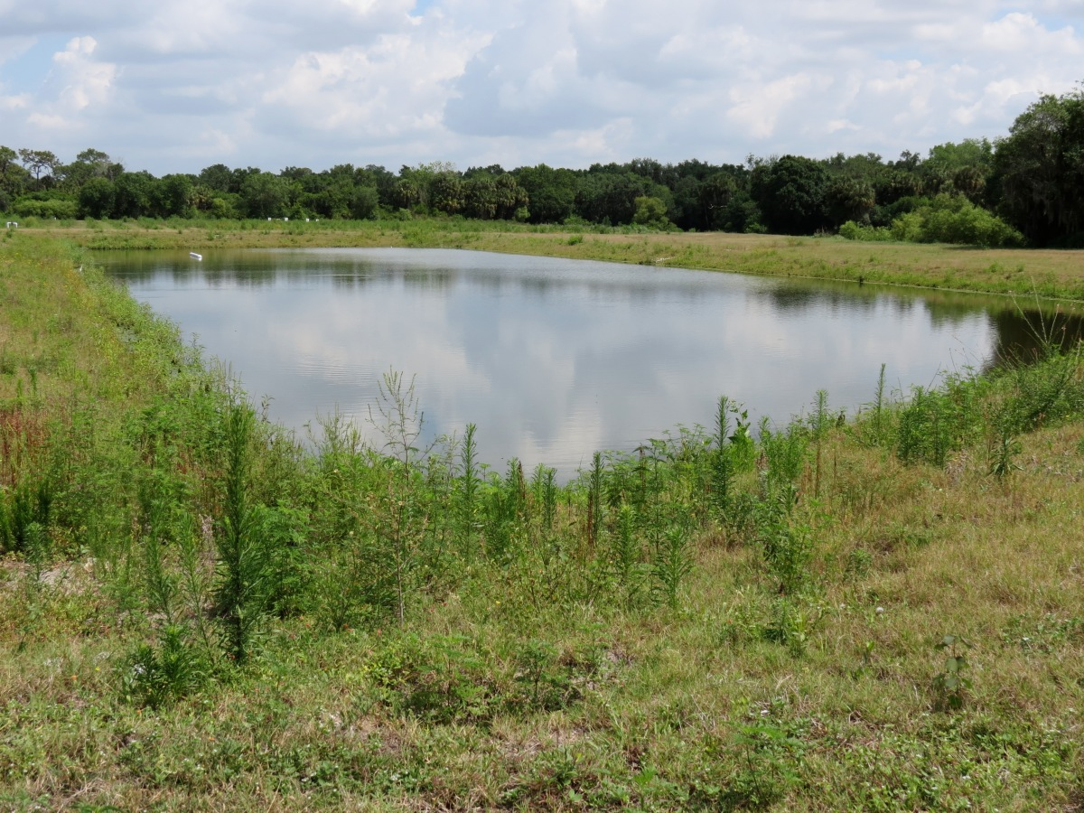 Farm ponds volusia soil water conservation district for Farm pond maintenance