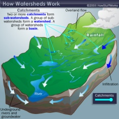 How watersheds work